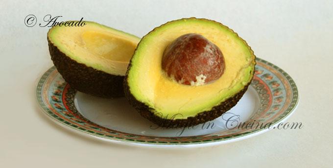 avocado--6380350