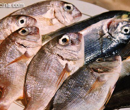Come capire se il pesce è fresco